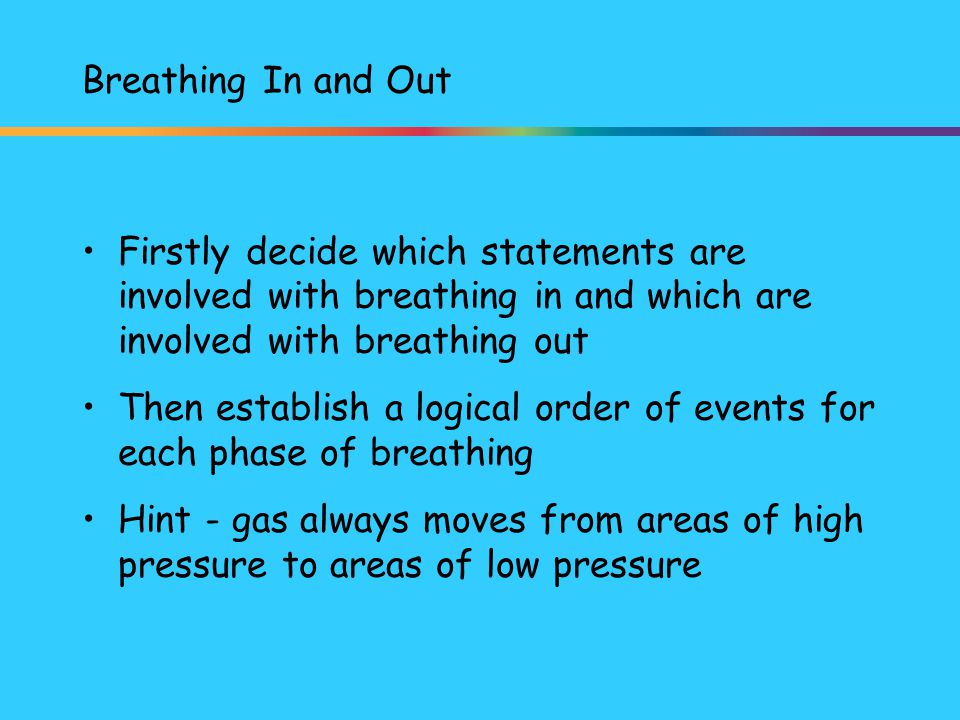 Breathing In and Out Firstly decide which statements are involved with breathing in and which are involved with breathing out.