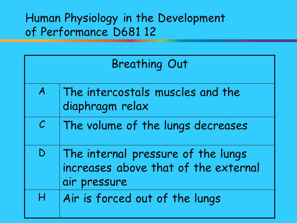 Human Physiology in the Development of Performance D681 12