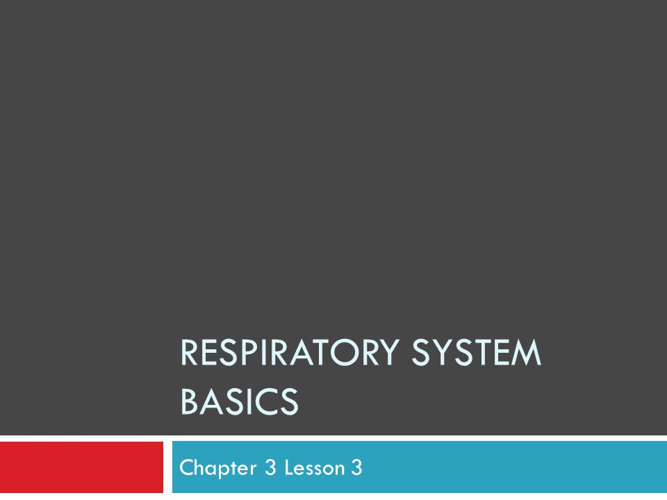 RESPIRATORY SYSTEM BASICS