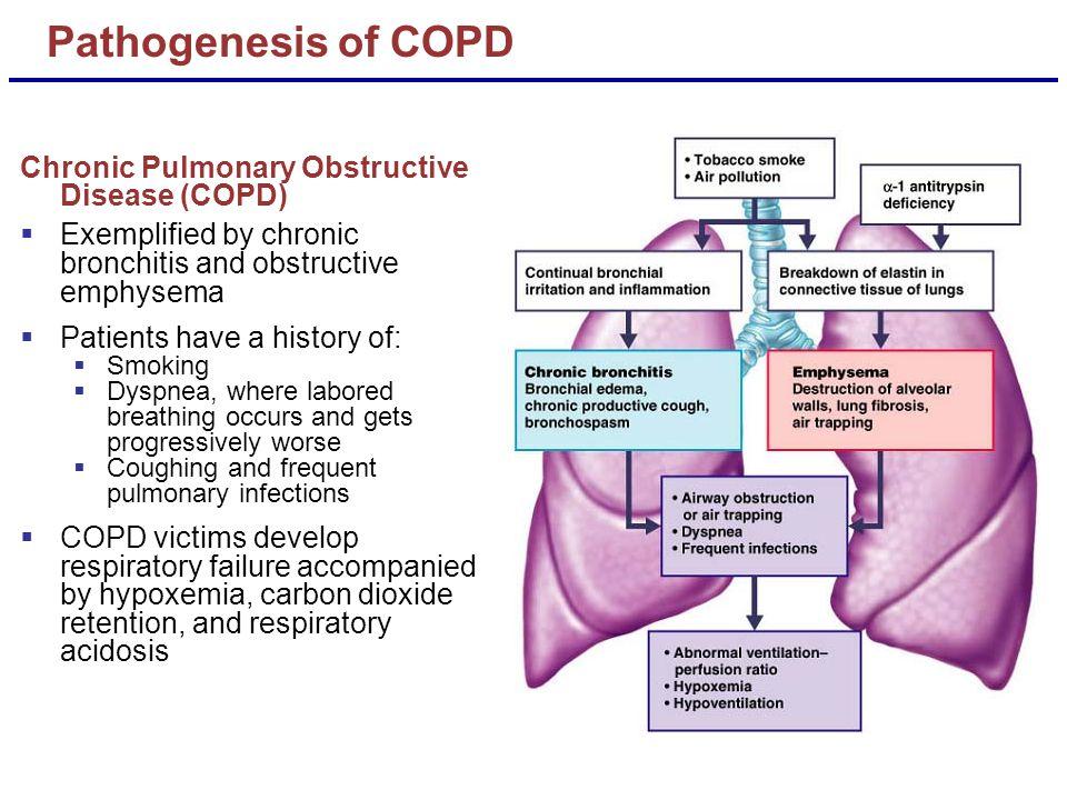 Pathogenesis of COPD Chronic Pulmonary Obstructive Disease (COPD)