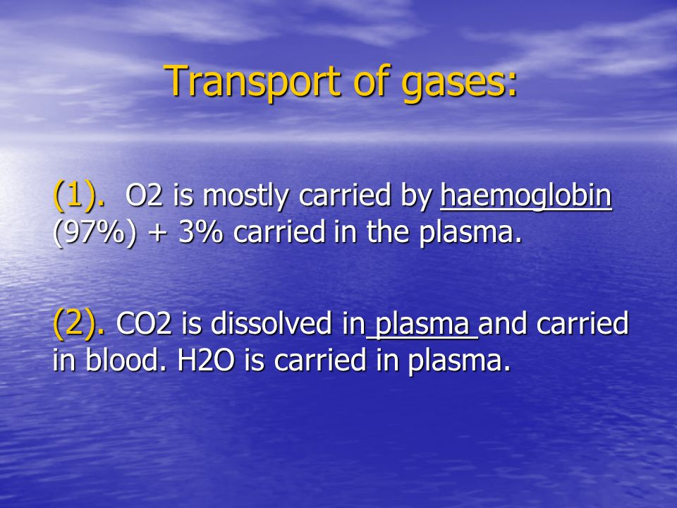 Transport of gases: (1). O2 is mostly carried by haemoglobin (97%) + 3% carried in the plasma.