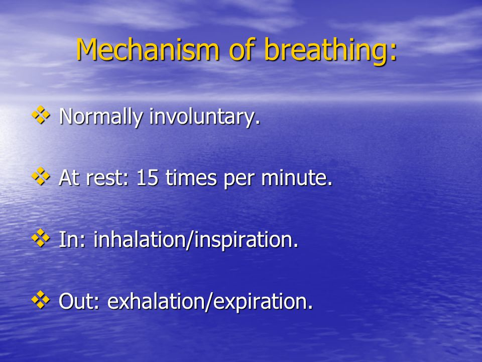 Mechanism of breathing: