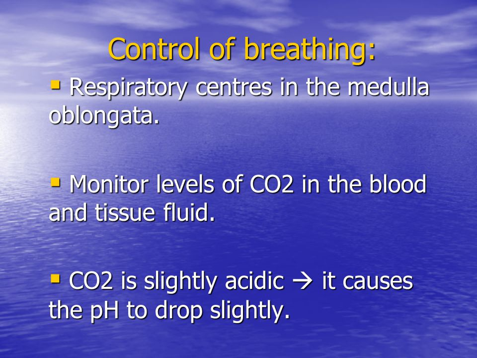 Control of breathing: Respiratory centres in the medulla oblongata.