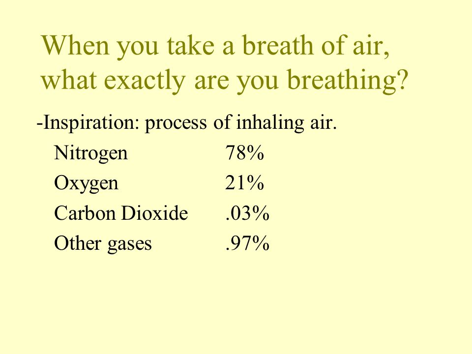 When you take a breath of air, what exactly are you breathing