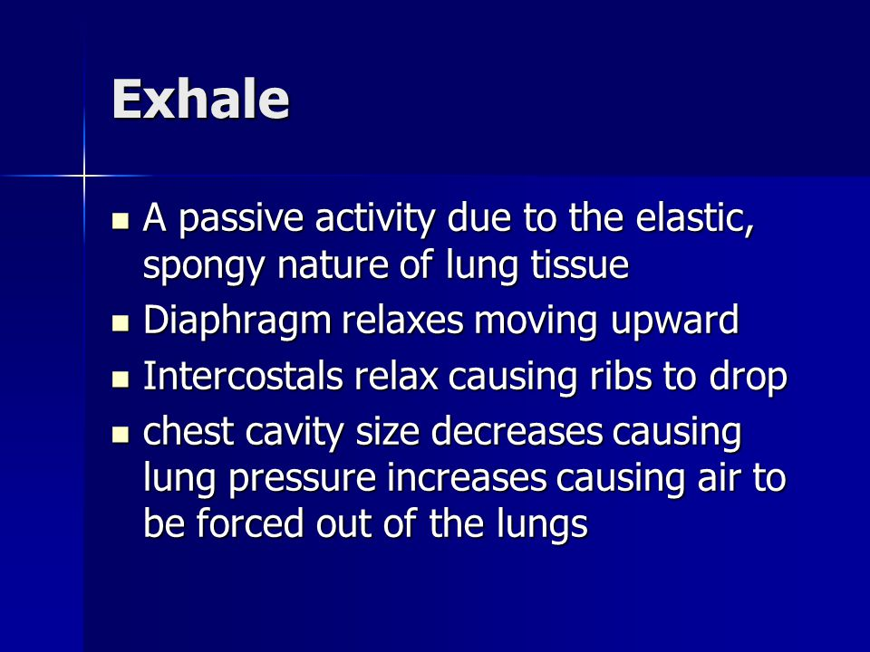 Exhale A passive activity due to the elastic, spongy nature of lung tissue. Diaphragm relaxes moving upward.