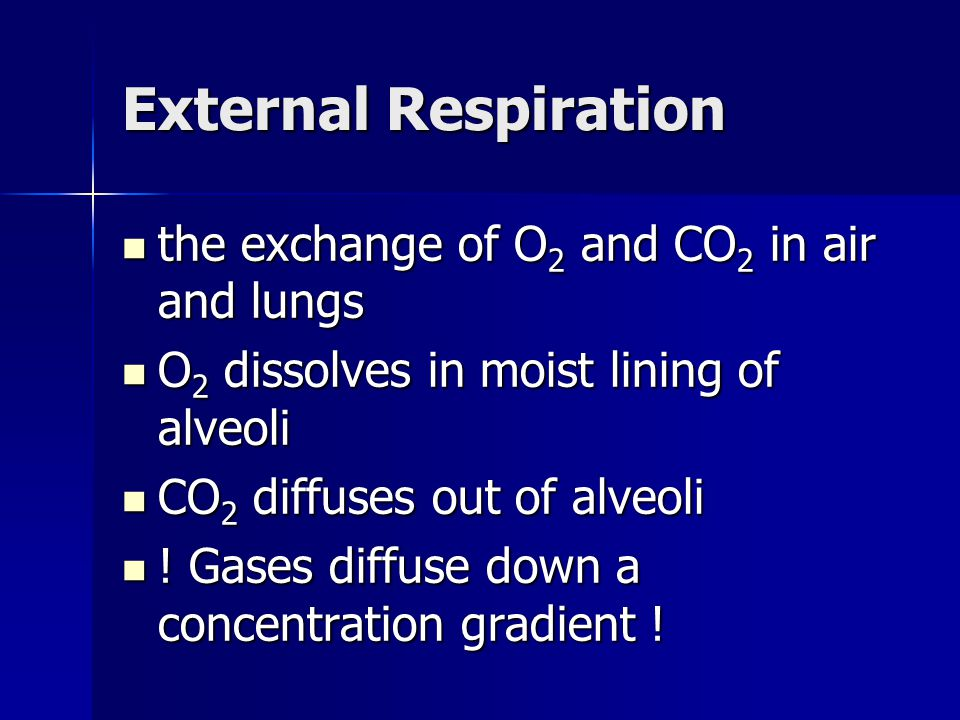 External Respiration the exchange of O2 and CO2 in air and lungs