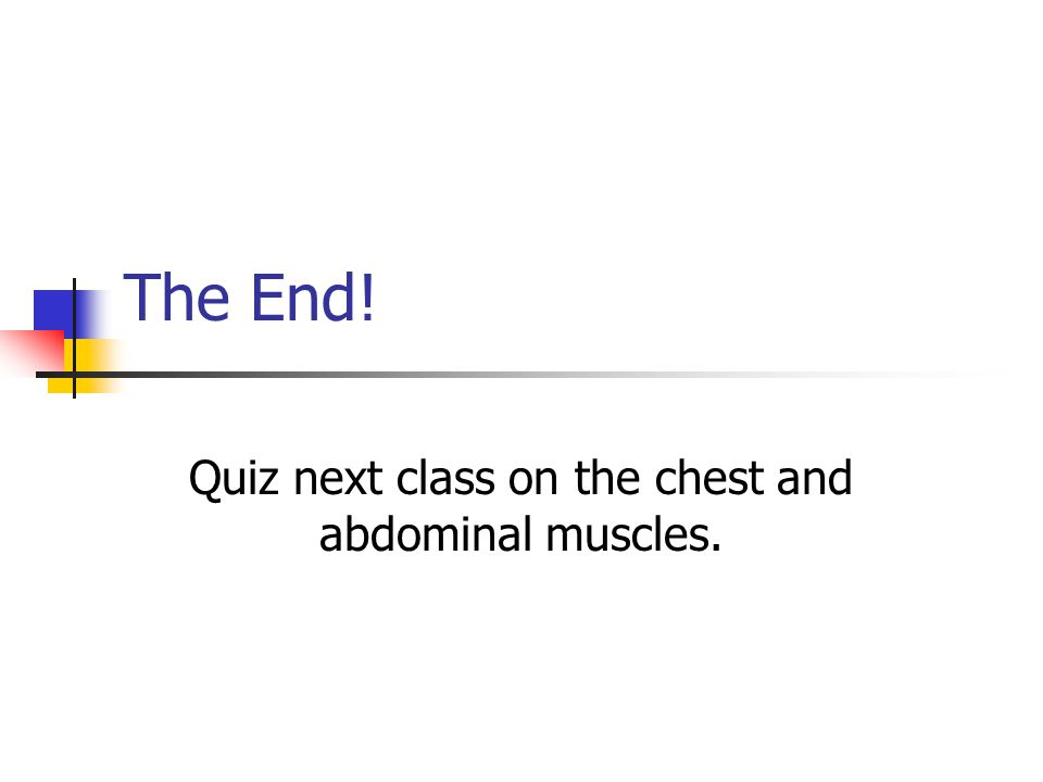Quiz next class on the chest and abdominal muscles.