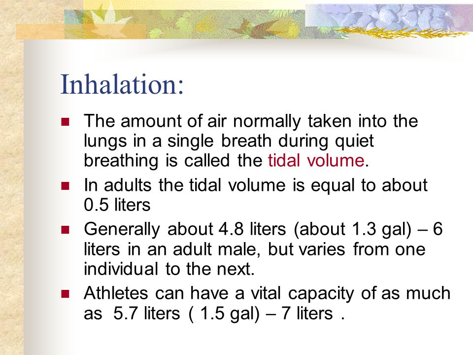 Inhalation: The amount of air normally taken into the lungs in a single breath during quiet breathing is called the tidal volume.