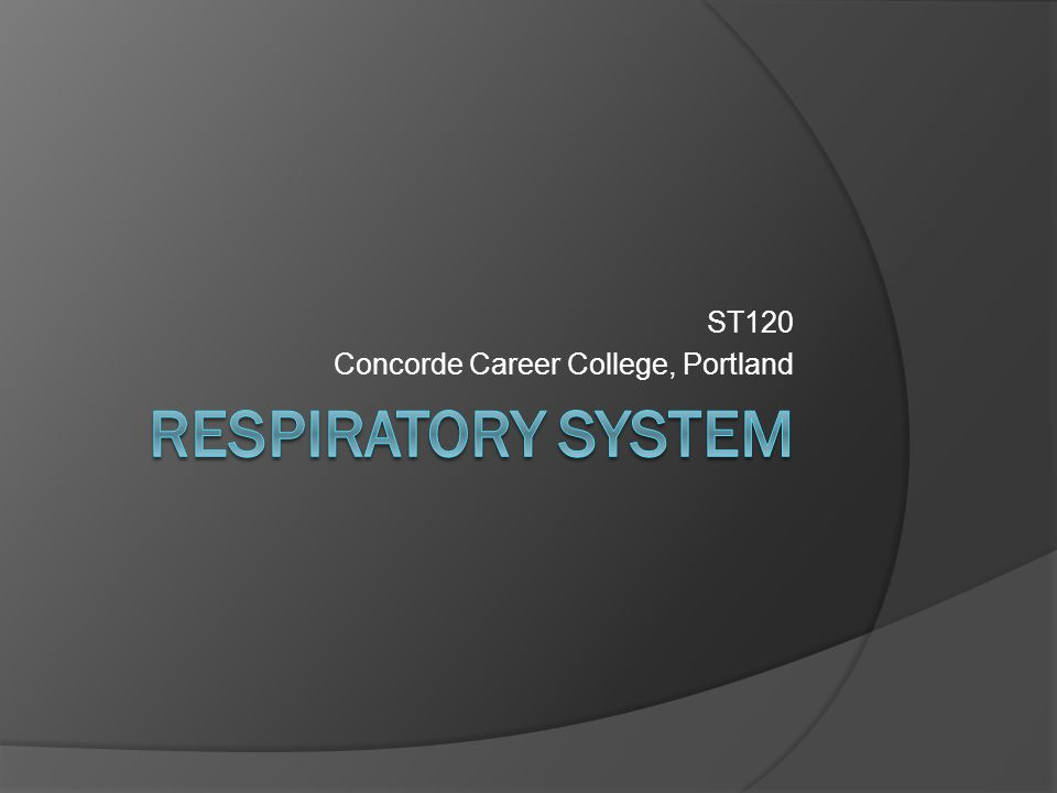 ST120 Concorde Career College, Portland