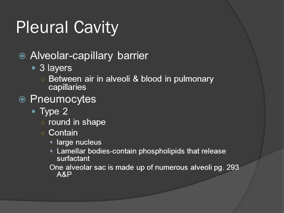 Pleural Cavity Alveolar-capillary barrier Pneumocytes 3 layers Type 2