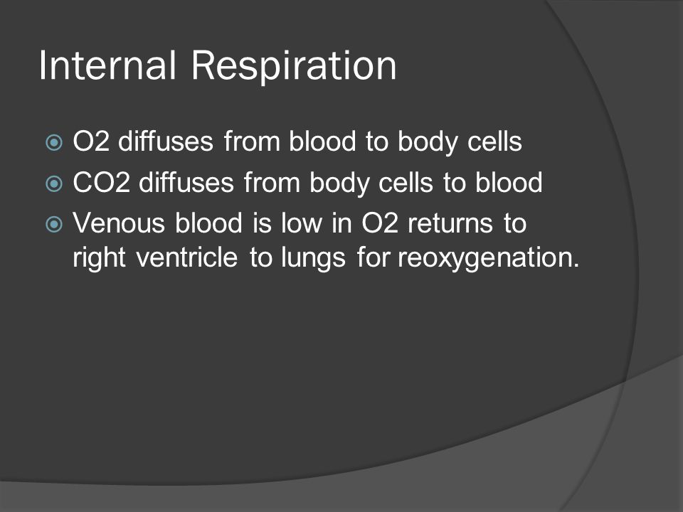 Internal Respiration O2 diffuses from blood to body cells