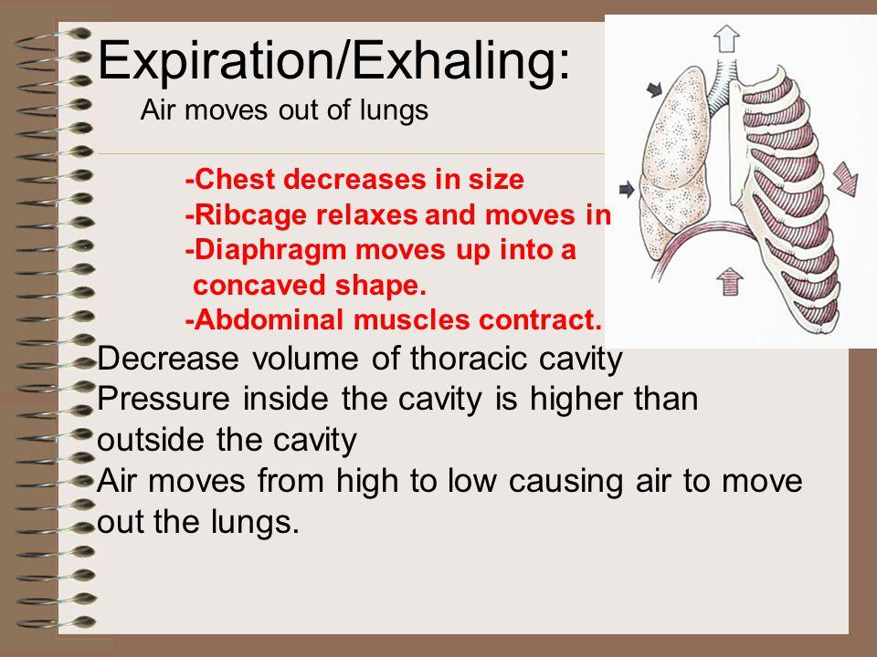 Expiration/Exhaling: