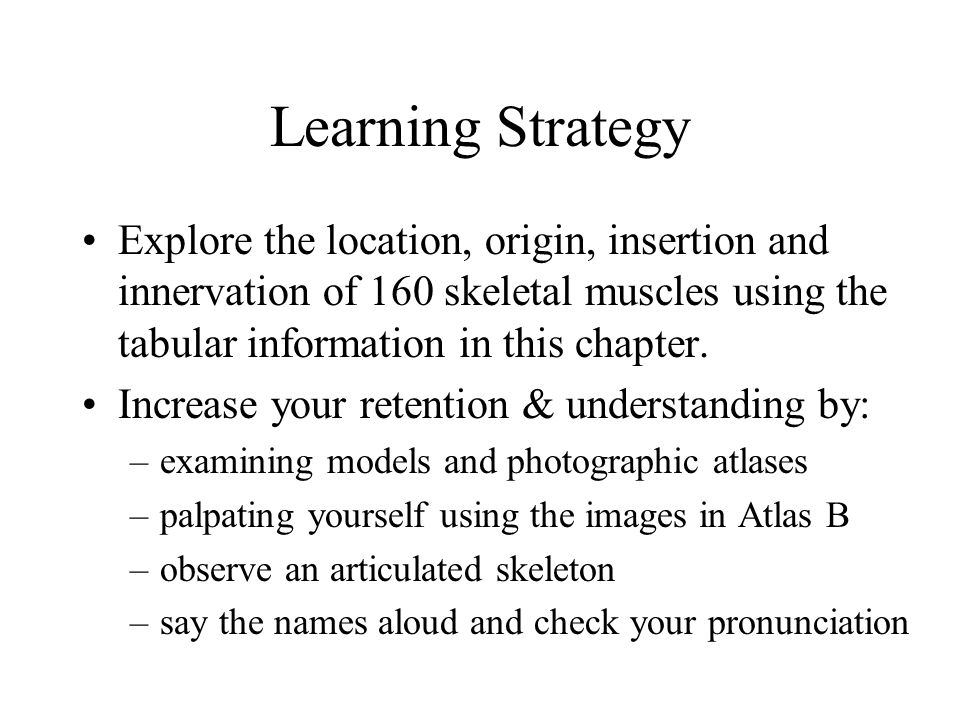 Learning Strategy Explore the location, origin, insertion and innervation of 160 skeletal muscles using the tabular information in this chapter.