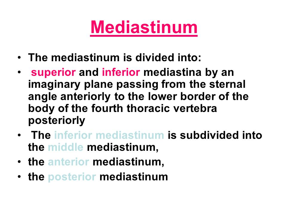 Mediastinum The mediastinum is divided into: