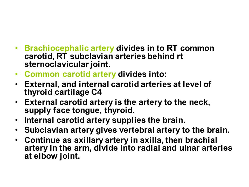 Brachiocephalic artery divides in to RT common carotid, RT subclavian arteries behind rt sternoclavicular joint.