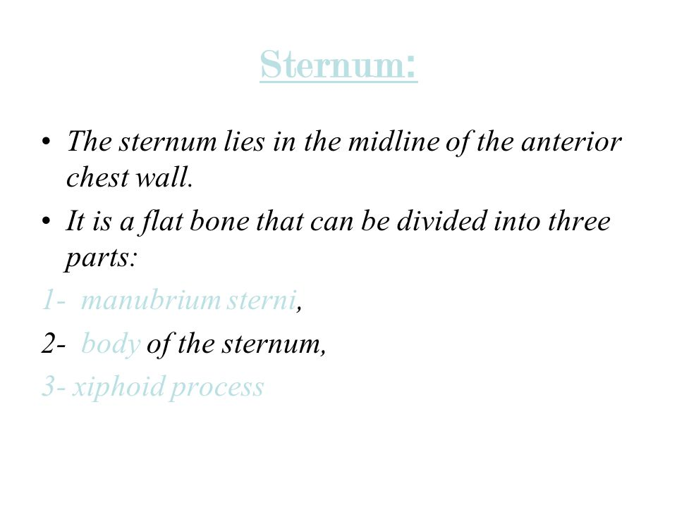 :Sternum The sternum lies in the midline of the anterior chest wall.