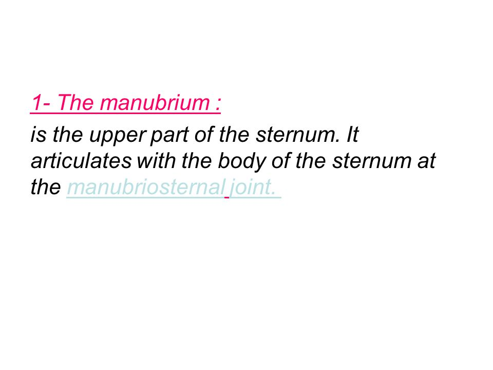 1- The manubrium : is the upper part of the sternum.