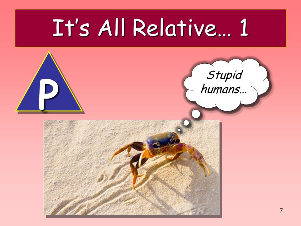 It's All Relative… 1 P Stupid humans…