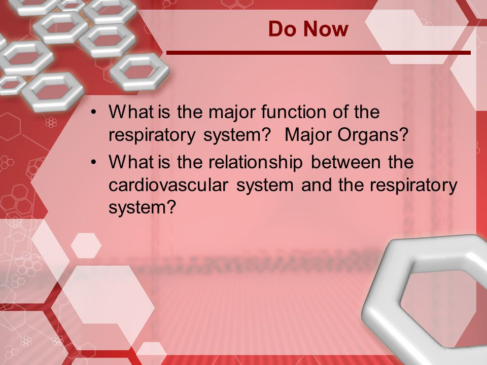 Do Now What is the major function of the respiratory system Major Organs