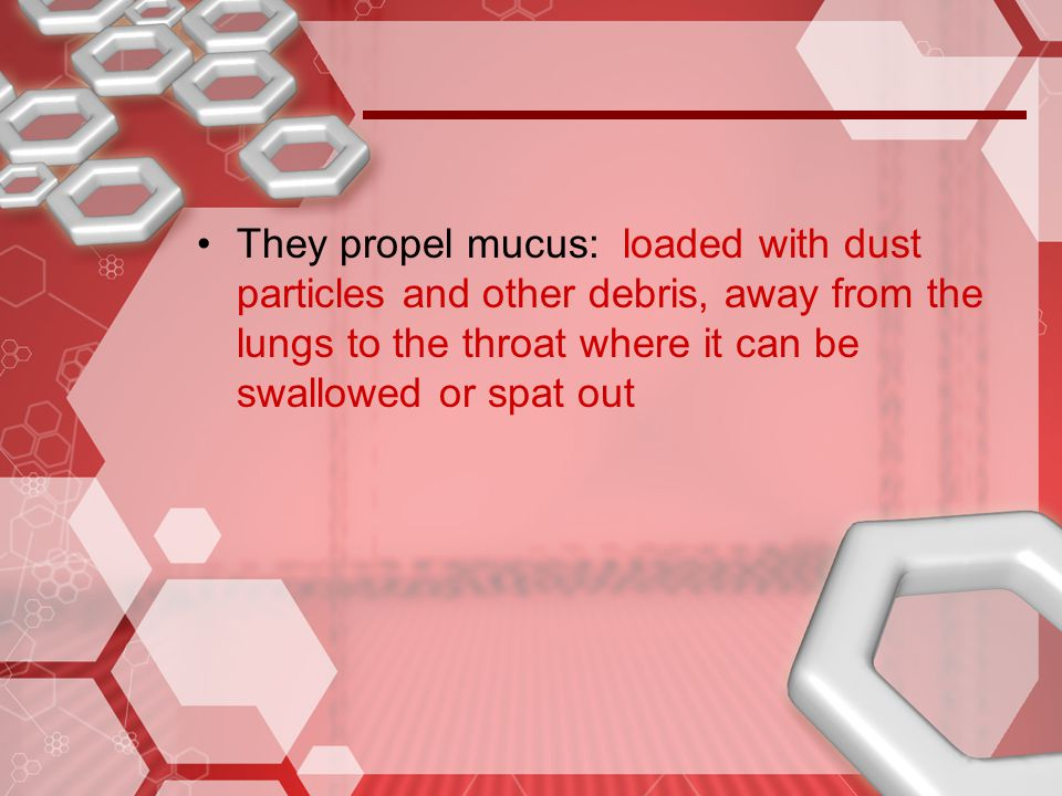 They propel mucus: loaded with dust particles and other debris, away from the lungs to the throat where it can be swallowed or spat out