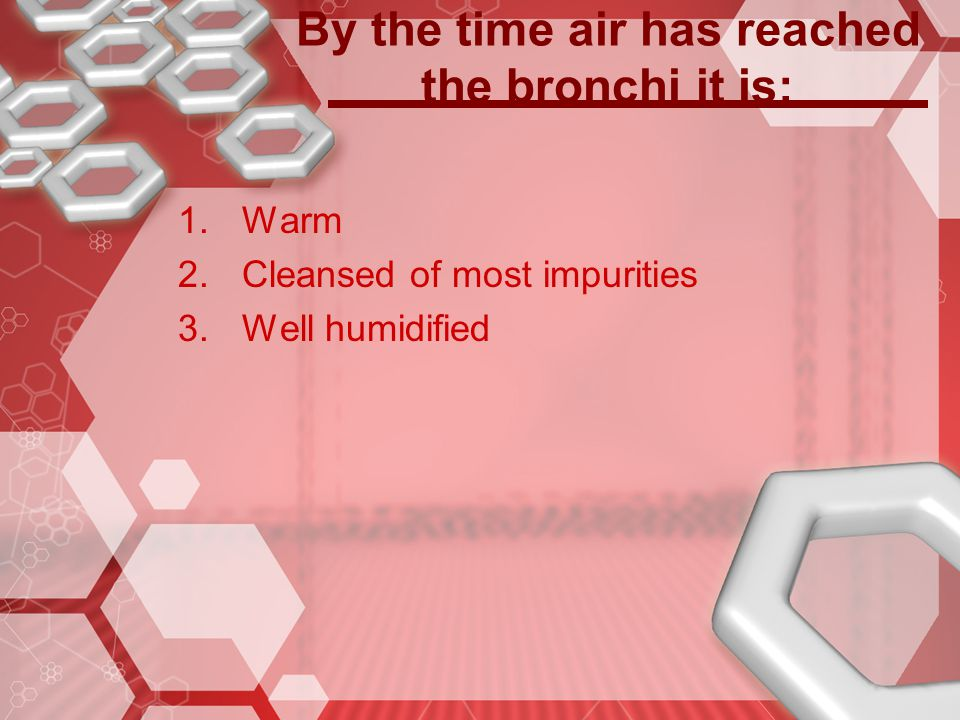 By the time air has reached the bronchi it is: