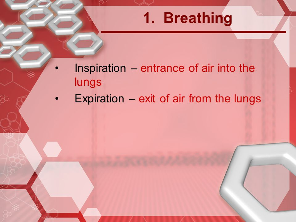1. Breathing Inspiration – entrance of air into the lungs