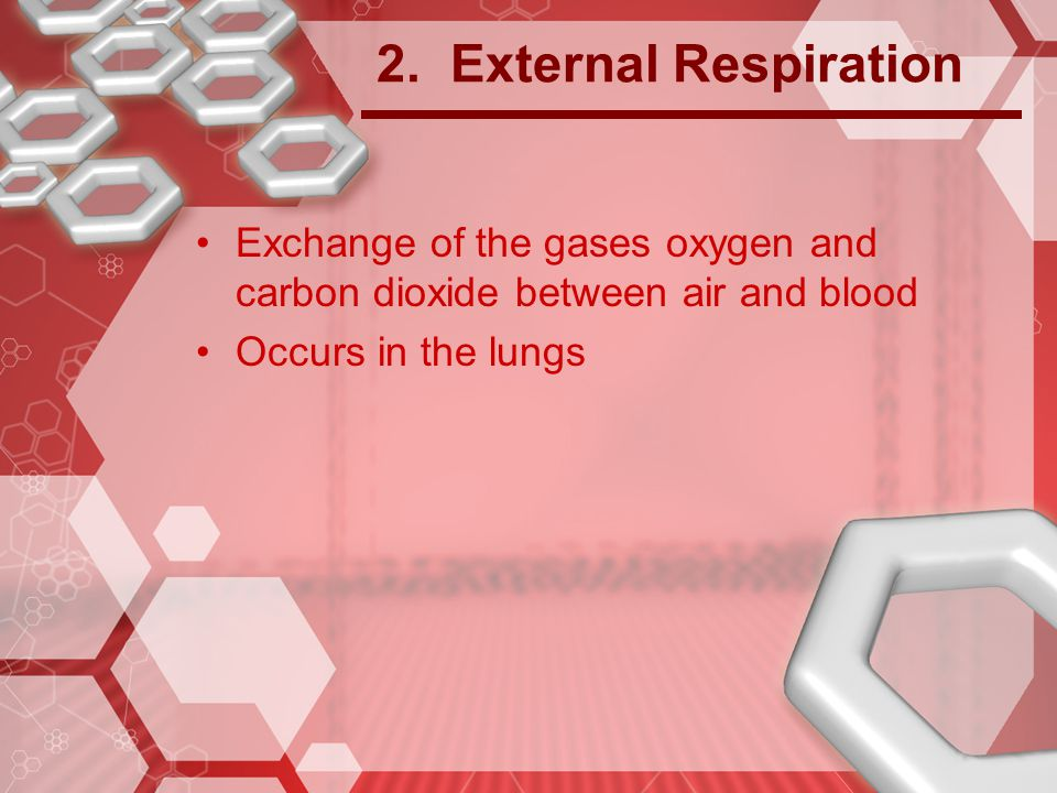 2. External Respiration Exchange of the gases oxygen and carbon dioxide between air and blood.