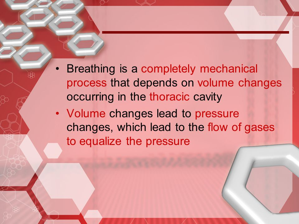 Breathing is a completely mechanical process that depends on volume changes occurring in the thoracic cavity