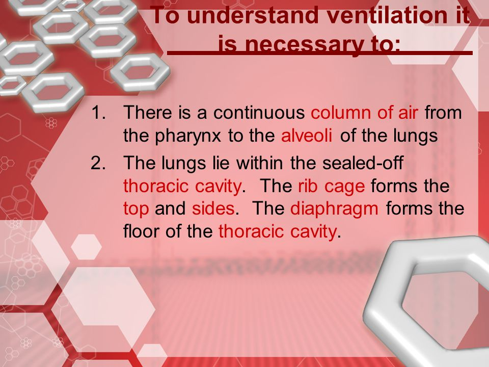 To understand ventilation it is necessary to: