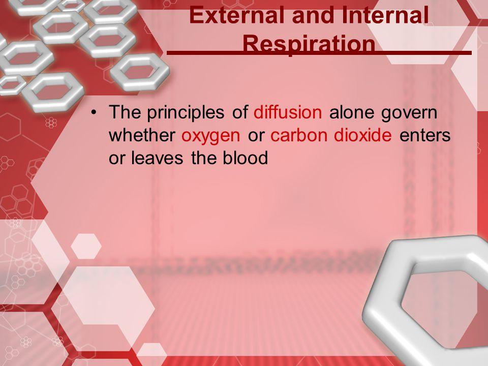 External and Internal Respiration