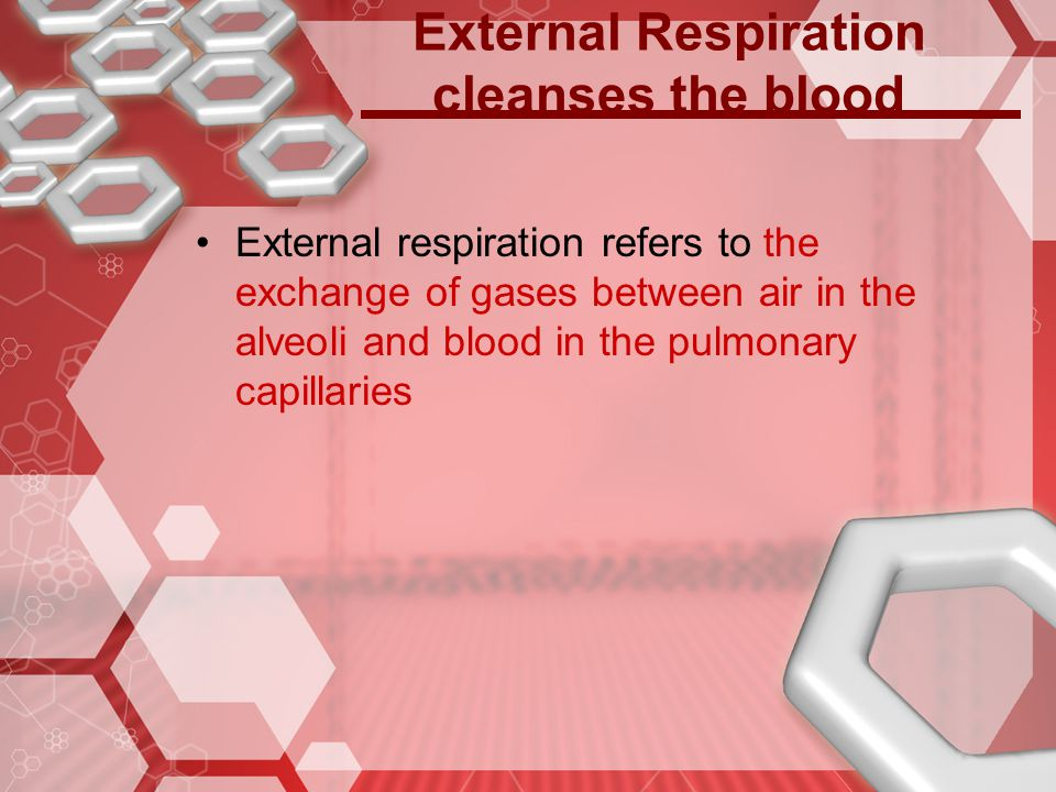 External Respiration cleanses the blood
