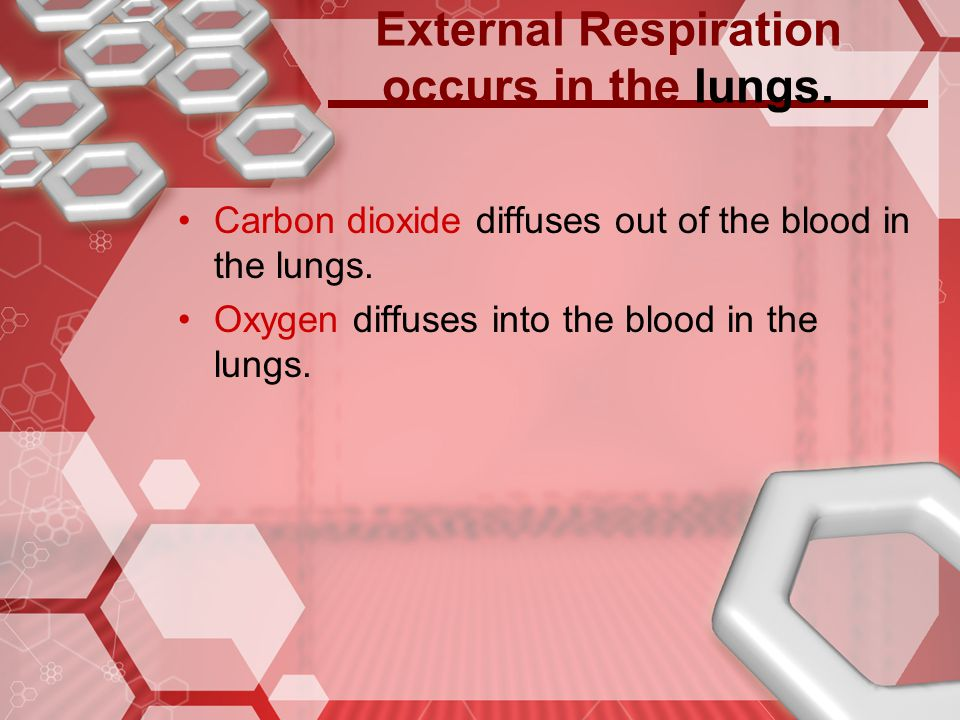 External Respiration occurs in the lungs.