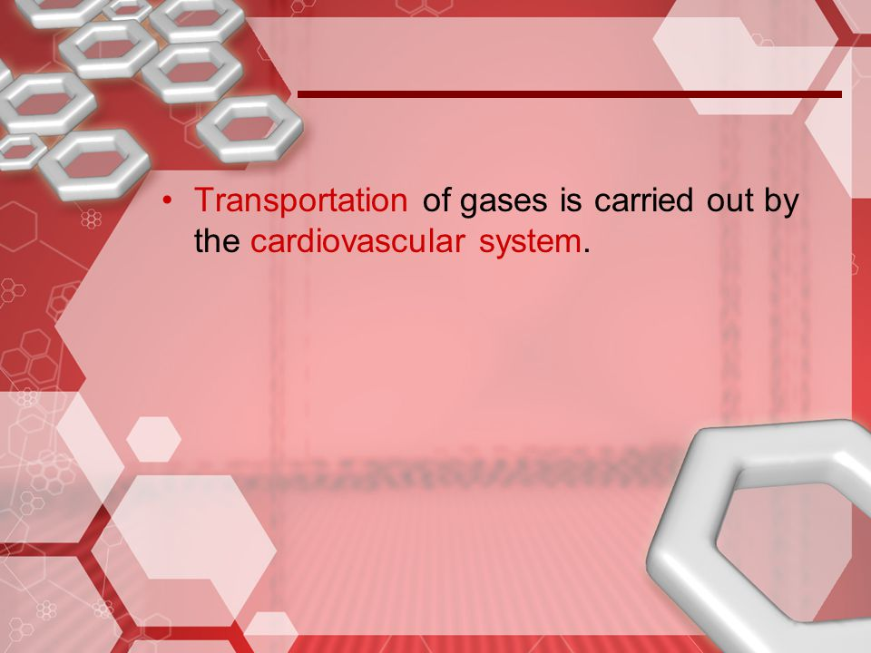 Transportation of gases is carried out by the cardiovascular system.