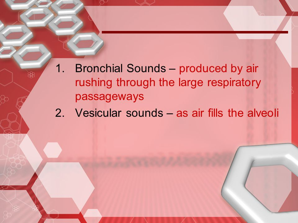 Bronchial Sounds – produced by air rushing through the large respiratory passageways