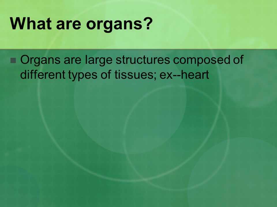 What are organs Organs are large structures composed of different types of tissues; ex--heart