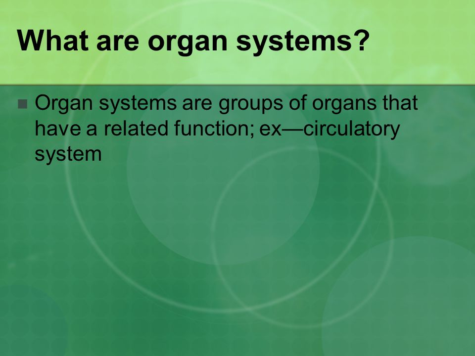 What are organ systems.