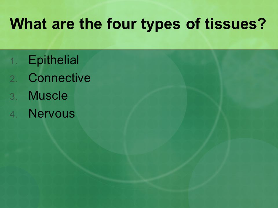 What are the four types of tissues