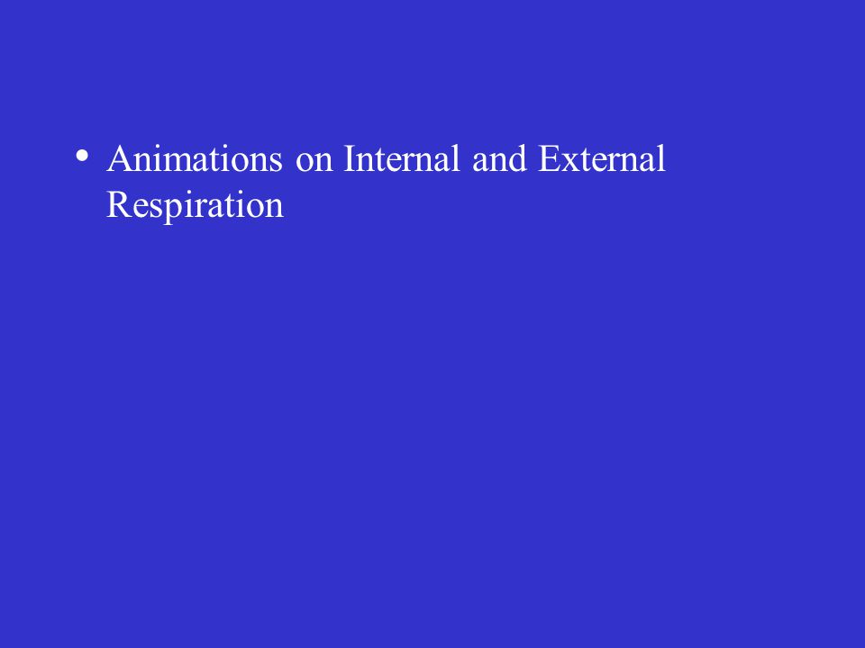 Animations on Internal and External Respiration