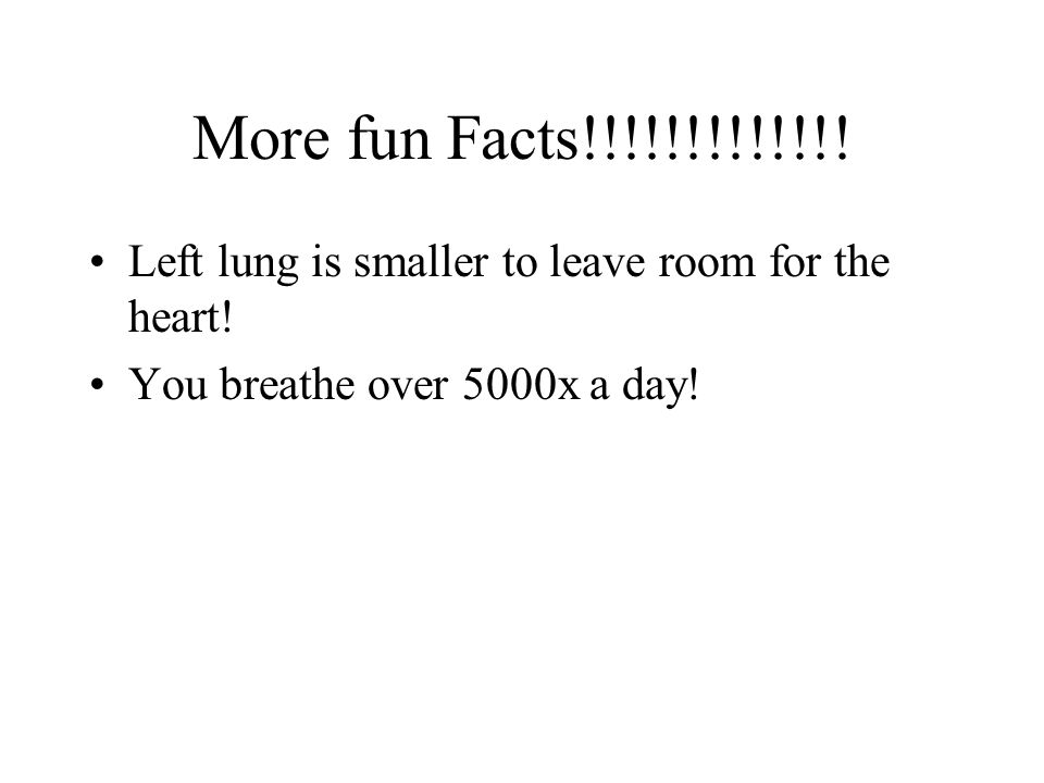 More fun Facts!!!!!!!!!!!!. Left lung is smaller to leave room for the heart.