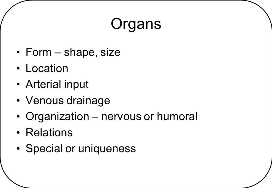 Organs Form – shape, size Location Arterial input Venous drainage