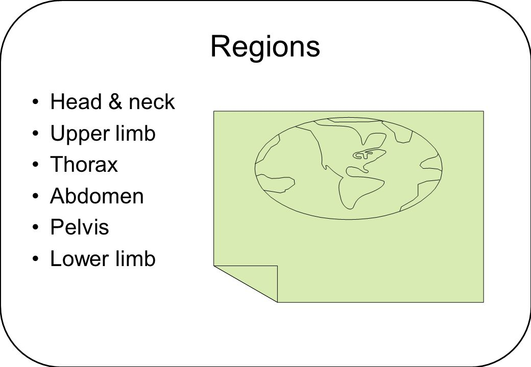 Regions Head & neck Upper limb Thorax Abdomen Pelvis Lower limb