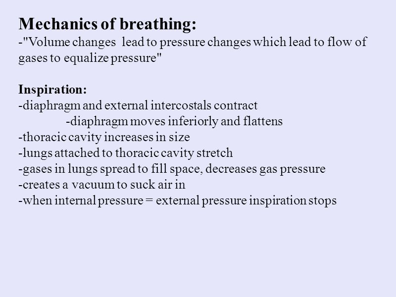 Mechanics of breathing: