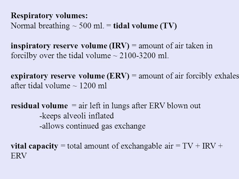 Respiratory volumes: Normal breathing ~ 500 ml. = tidal volume (TV)