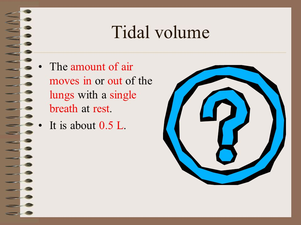 Tidal volume The amount of air moves in or out of the lungs with a single breath at rest.