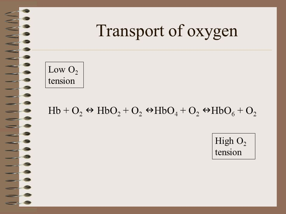 Transport of oxygen Hb + O2  HbO2 + O2 HbO4 + O2 HbO6 + O2