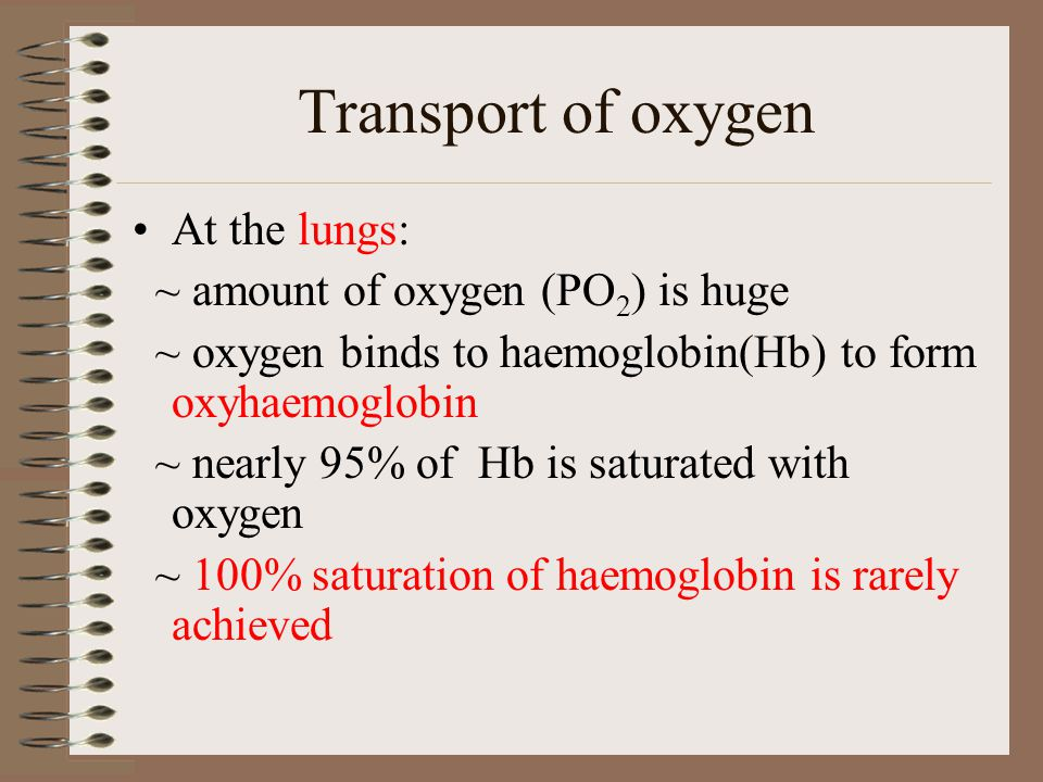 Transport of oxygen At the lungs: ~ amount of oxygen (PO2) is huge