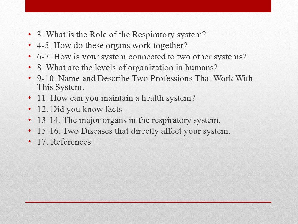 3. What is the Role of the Respiratory system