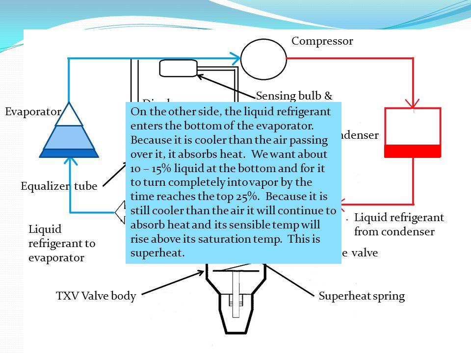 Compressor Sensing bulb & capillary tube. Diaphragm. Evaporator.