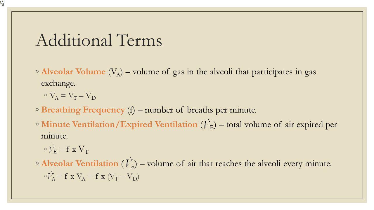 Additional Terms Alveolar Volume (VA) – volume of gas in the alveoli that participates in gas exchange.