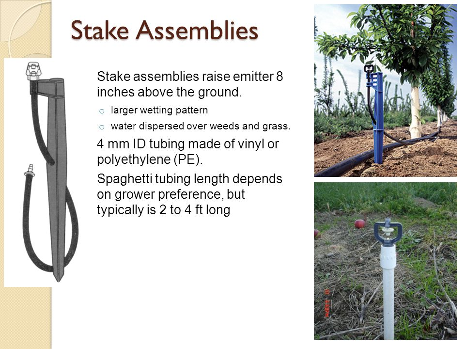 Stake Assemblies Stake assemblies raise emitter 8 inches above the ground. larger wetting pattern.